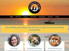 Website design for salty dogs of cape ann dog walking